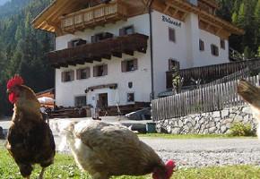 Stallwies - Alpine Hut