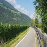 Radweg Vinschgau - Göflan - Naturns - 5