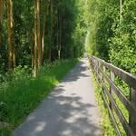 Radweg Vinschgau - Mals - Prad - 6
