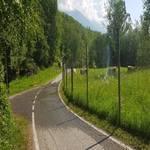 Radweg Vinschgau - Prad - Mals - 19
