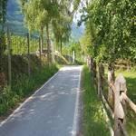 Radweg Vinschgau - Prad - Mals - 6