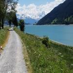 Radweg Vinschgau am Reschensee 4