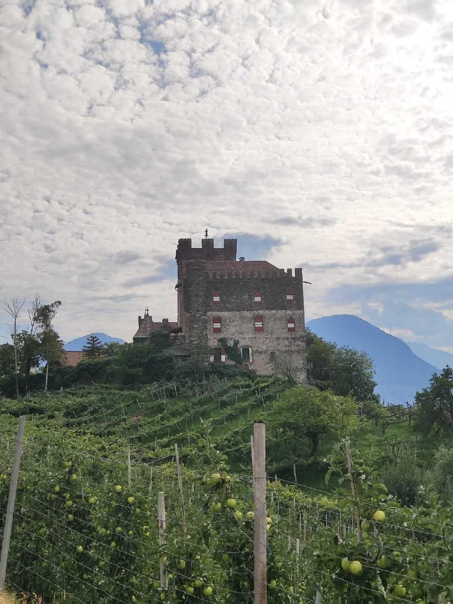 Burg Katzenstein - Foto: Daniela Gerstgrasser