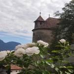 Schloss Schenna   3 - Foto: Daniela Gerstgrasser