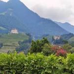 Schloss Tirol | 3 - Foto: Daniela Gerstgrasser